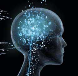 otak-kepala